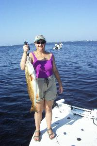 Spring-time redfish caught in Charlotte Harbor