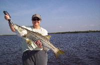 15 pound Charlotte Harbor snook